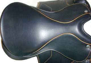 Saddle%20Dressage%20Lander%205.jpg